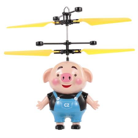 Свинка летающая над рукой - фото 11234